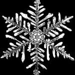 snowflake-150x150